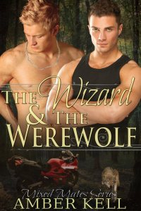 The Wizard and the Werewolf 400x600