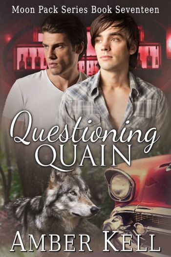 Questioning Quain jpg
